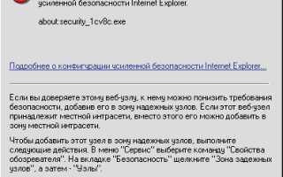 Security 1cv8c exe internet explorer