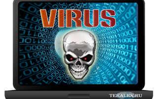 Программные вирусы это