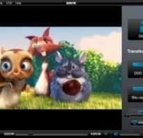 Dvd проигрыватель онлайн